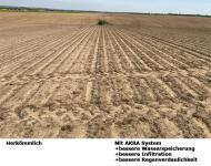 Bodenverschlämmung / Winderosion / Niederschlagserosion deutlich weniger nach 5 Jahren mit AKRA System-