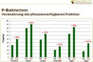 P-Bakterien: Veränderung der pflanzenverfügbaren Fraktion (2013)-