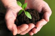 Wertvolles Bodenleben-