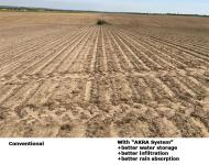 Soil mudsilting / wind erosion / precipitation erosion significantly reduced after 5 years with the AKRA system-