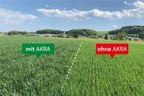 Effets positifs de l'utilisation de AKRA